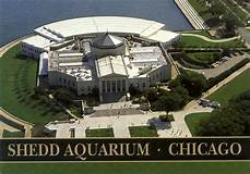 "Shedd Aquarium Family Membership won at ""A Night of Glenbrook Theater"""